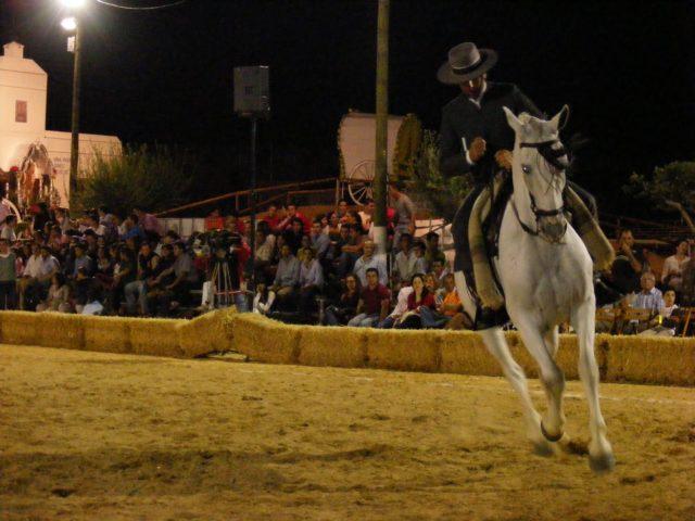 Doma-Vaquera 2009