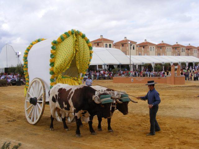 """Los bueyes y sus carreteros volverán a ser protagonistas en la quinta edición de """"Una Pará en Gines"""""""