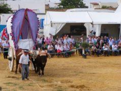 Pará 2013-Con Yuntas
