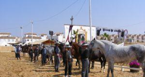 Concurso-morfofuncional2011