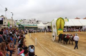 Pará2016-yuntas