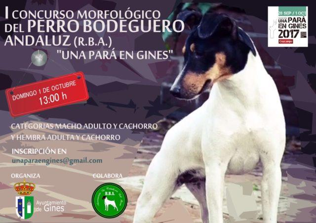 El Perro Bodeguero Andaluz se une este año a Una Pará en Gines de la mano del I Concurso Morfológico de la raza