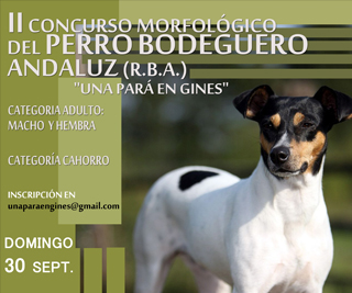 Perro-bodeguero2018