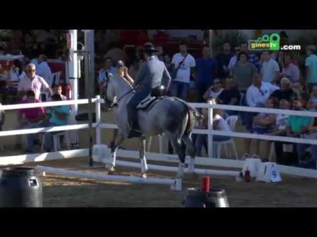 La equitación de trabajo se consolida en Una Pará en Gines 2019