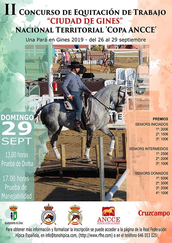 Concurso de Equitación de trabajo