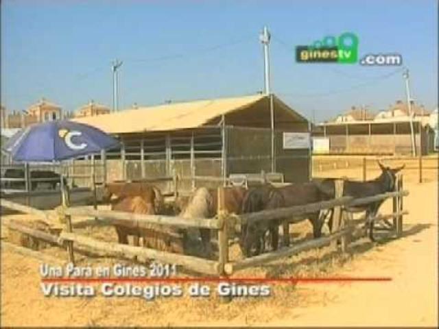 Visitas de escolares a Una Pará en gin...