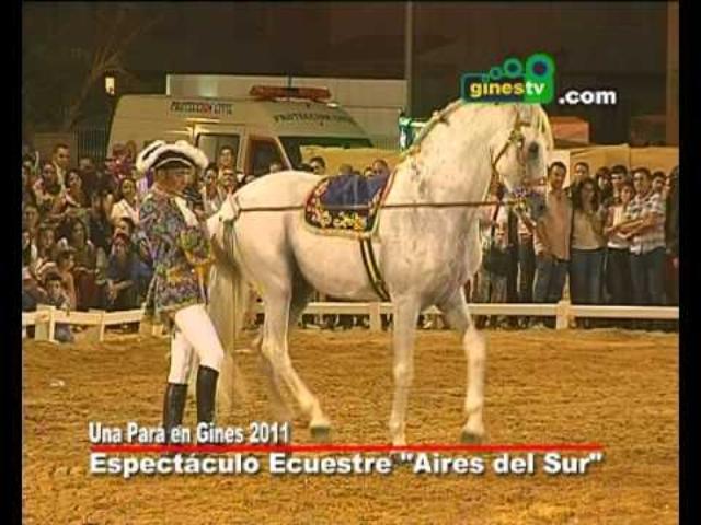 """Espectáculo ecuestre """"Aires del Sur"""" e..."""