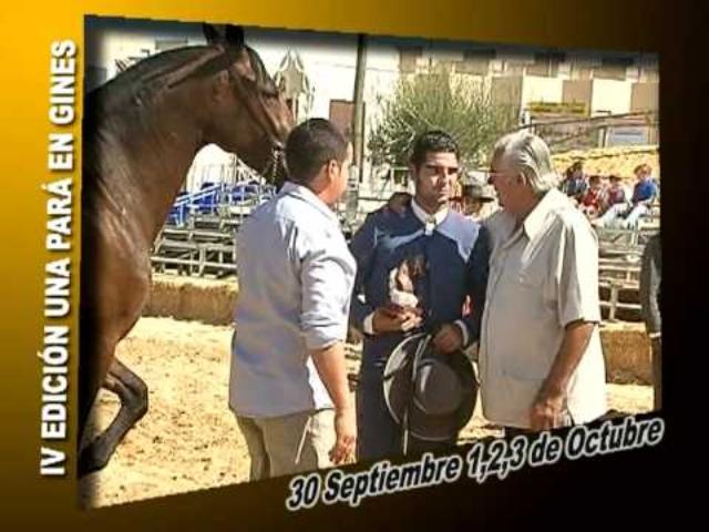 Resumen Una Pará en Gines 2009 (2)...