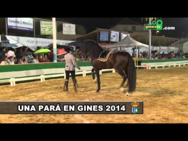 """Espectáculo Ecuestre """"Aires del Sur""""..."""