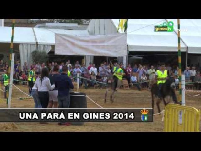 """Carreras de Burros en """"Una Pará en Gines""""..."""