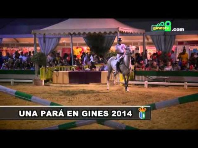 Exhibición a caballo de salto de obst...