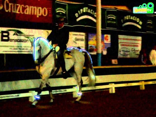 """Espectáculo ecuestre """"La equitación..."""