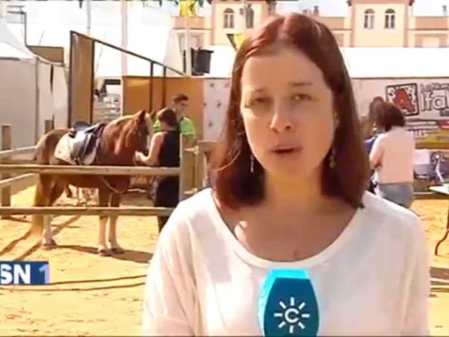 Informativos Canal Sur TV en Una P...