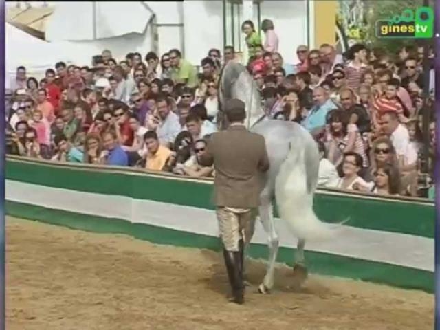 Spot Una Pará en Gines 2014...