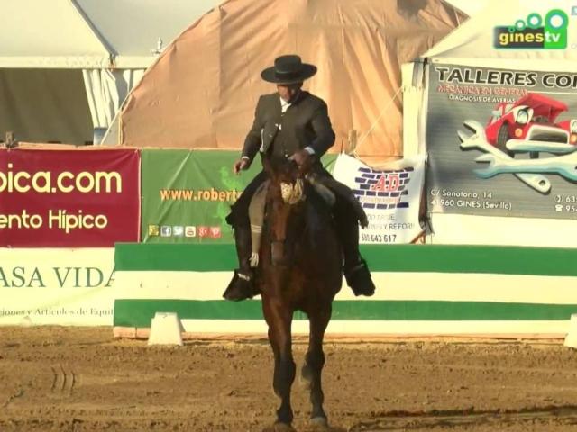 V Concurso Nacional de Doma Vaquera
